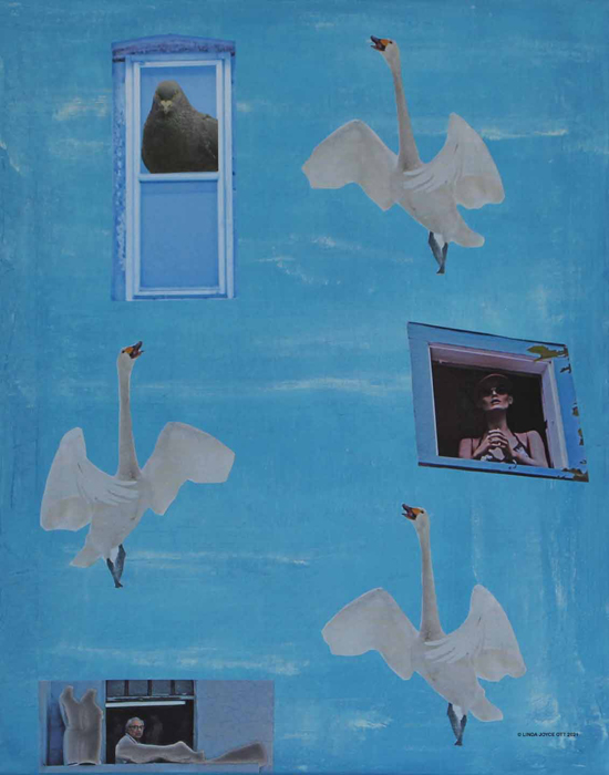 Swan Serenade photo collage by Linda Joyce Ott features swans and window photos