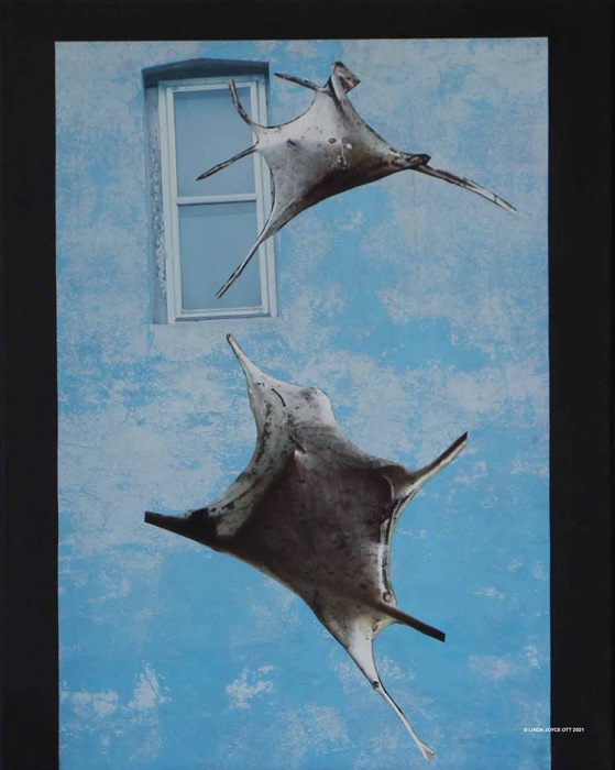 Let me in - wee-ooo photo collage by Linda Joyce Ott features tent caterpillars on blue wall